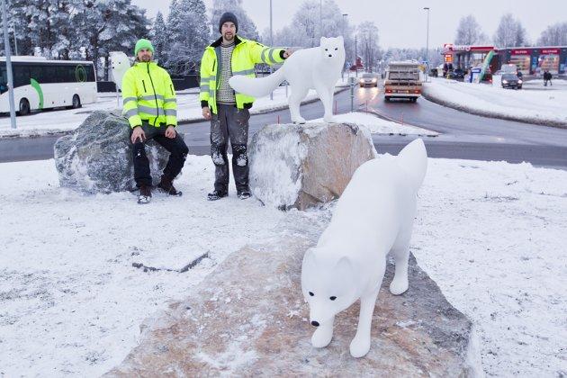 REVER: De tre arktiske revene i rundkjøringen ved Cirkle K har kunstnerne Lars Skjelbreia (t.v.) og Aleksander Stav kalt for Esja, Telma og Lubbi. Ikke alle er like begeistret for utsmykningen.