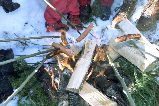 Kongsvinger, 18.03.2001 PØLSEFEST: Naboene i Hytebakkstien lagde bål og grillet pølser med barna på vårens fineste dag.