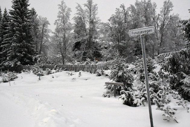 Skal skiløypa gå på Furusjøvegen eller utenom?
