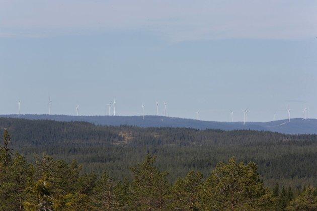 Utsikt mot Raskiftet fra nord for Kjølberget. Avstand i luftlinje to mil.