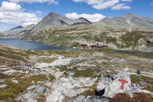 POPULÆR: Rondvassbu trekker rekordmange turister til fjells – igjen. Foto; Gorm Kallestad, NTB scanpix