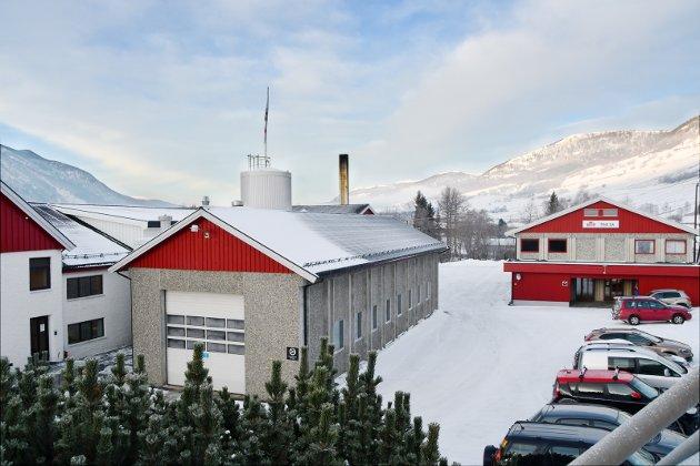 TINE SATSER: Dovre Ysteri blir profilnavnet på produksjonen av Tines hvitmuggost. Foto: Vidar Heitkøtter