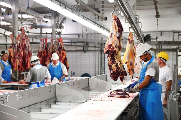 OMSTILLING: Arbeidstakerne i dagens Nortura-anlegg er på jakt etter ny jobb på Otta.