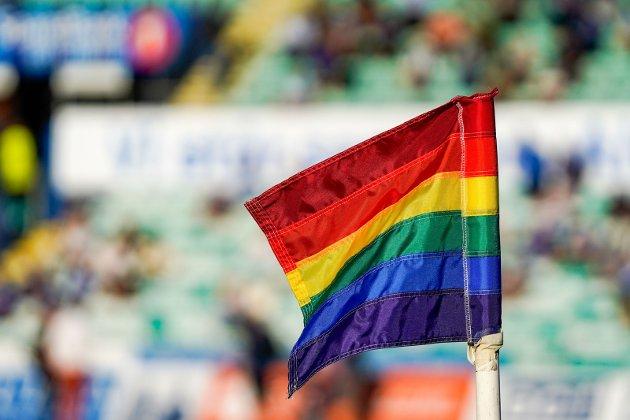 MANGFOLD: Stadig flere organisasjoner og enkeltpersoner gir årlig uttrykk for sin støtte til Pride og skeive. Det trengs!Foto: Håkon Mosvold Larsen/NTB SCANPIX