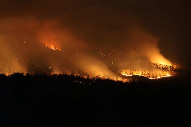 KLIMA:  Vi må si nei til handelsavtaler som f.eks. gir Brasils president grønt lys for å fortsette å brenne ned regnskogen, skriver Solveig Heim i Attac.