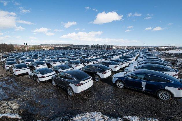 Leveringsklare Tesla-er fotografert på Hellerudsletta for én måned siden. Roar Julsen mener populariteten til elbiler skyldes en usosial subsidiering. (Arkivfoto: Vidar Sandnes/RB)