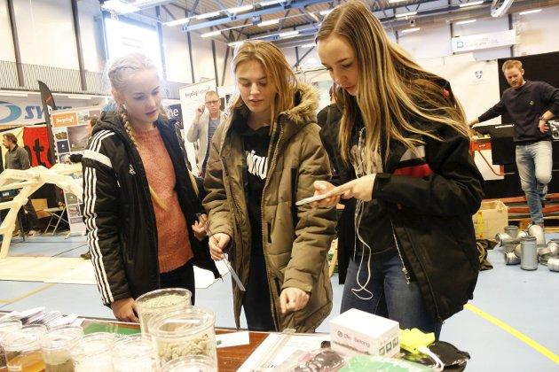 VET HVA DE VIL: 15-åringene Selma Sandhåland (f.v.), Jannicke Nilsen Grødem og Julie Stava fra Danielsen ungdomsskole.