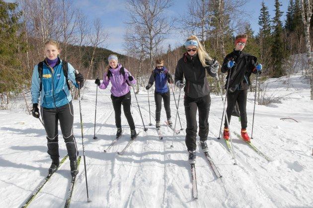 FOLKEHELSE: Mosjøen IL Ski vil at kommunen ser på alternative løsninger for å sikre at skiløypene på populære Sjåmen blir kjørt opp i helgene.  Det er et folkehelsetiltak mener de.