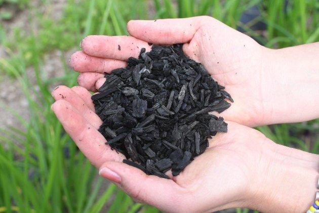 BIOKULL: Ved å pløye biokull ned i jorda, lagres karbon i flere hundre år, samtidig som biokull tilfører jorda næringsstoffer og har en kalkende effekt.