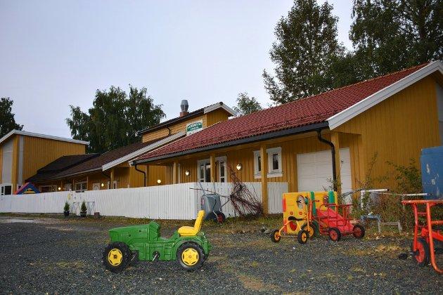 VIL VENTE: Formannskapet vil vente med å inngå avtale om kjøp av tilleggsareal ved Røra barnehage.