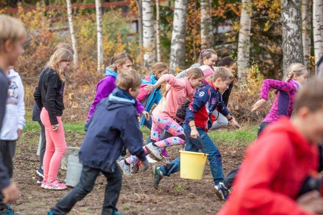 Det spares ikke på kreftene når elevene skal igang med potetplukking. Det er hard konkuranse om hvem som kan samle flest poteter på den raskeste måten.