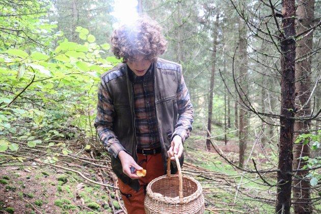 SKOGENS GULL: Daniel pleier å finne mye sopp om høsten i skogen i Holmestrand.