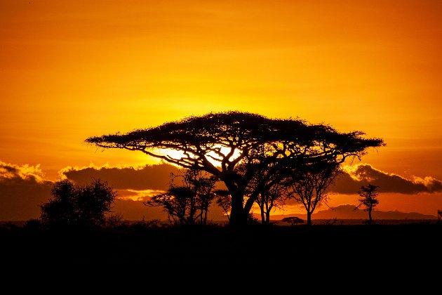 Dette bildet av Marie Oma har tittelen «Sunset».  Ho fekk totalt to av bilda sine «antatt».
