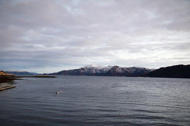 Jeg blir mer og mer sikker på at det er uheldig å legge enda et anlegg i Kjellafjorden ved Skjåskjæret hvor det blant annet er gyteområde for den utrydningstruede torsken. I tillegg drives det rekefiske der, skriver Gunnhild Gutvik, lokalpolitiker og innbygger i Kjellakrets.