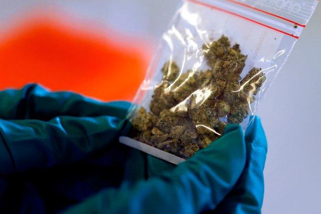 – Cannabis er mer vanlig å bruke i Norge enn før. For de fleste er bruken uproblematisk, for andre som befinner seg i en sårbar aldersgruppe kan bruken derimot bli problematisk, skriver debattforfatteren.