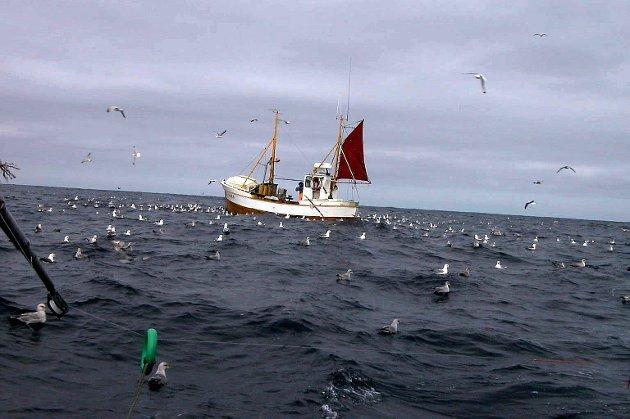 RIKT HAV I NORD: Sjark fra Skjervøy på vårtorskefiske i Finnmark. Arkivfoto: Gunnar Sætra