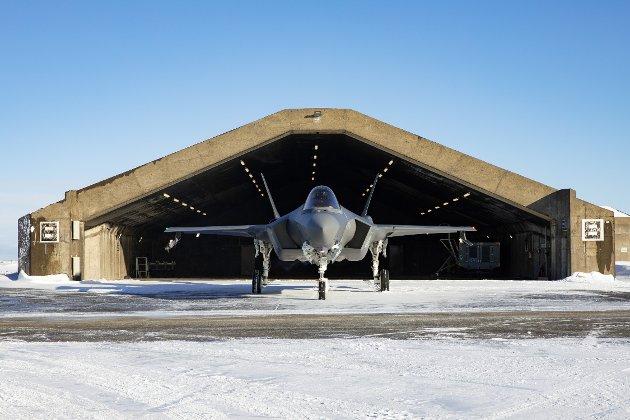 Norge kan redusere antall F-35 kampfly og kompensere ved å leie JAS Gripen av svenskene, foreslår Oddmund Hammerstad som én konkret mulighet i det nye nordiske forsvarssamarbeidet. (Foto: Forsvaret)