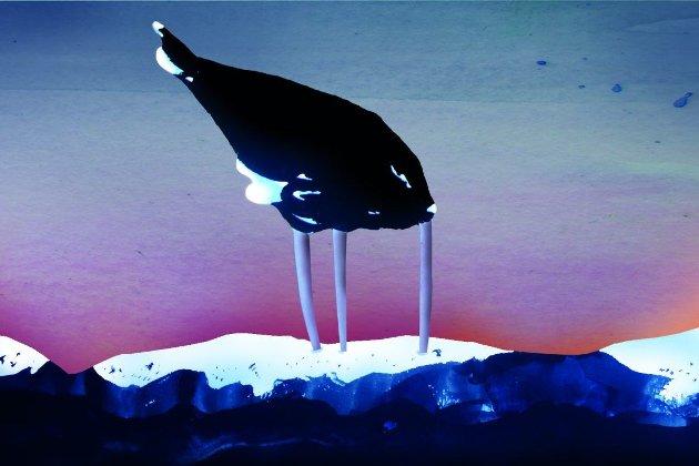 Norge må slutte å stikke hodet i sanden og forholde seg til at verdens land har forbudt atomvåpen.
