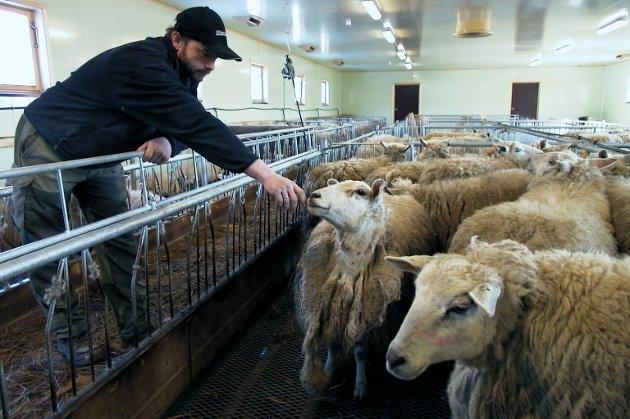 Det kan kanskje være på sin plass for alle stortingspolitikere i disse dager å kontakte sine distriktsrepresentanter og spørre seg til råds. Hva skal til for å beholde lokale matprodusenter i distrikts-Norge?skriver Harald Evanger.