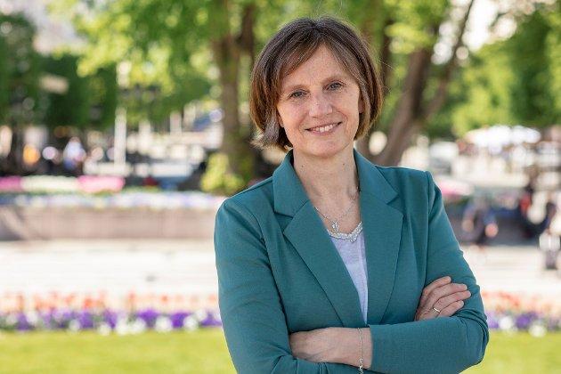 Kjersti Toppe, Stortingsrepresentant Senterpartiet
