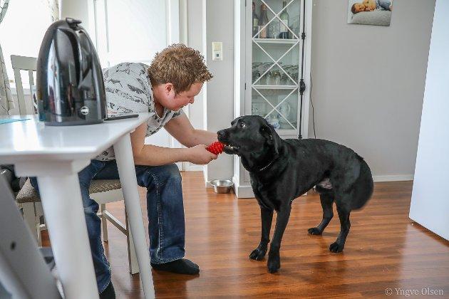 Labradoren Toby har blitt Cliffs gode hjelper ute på rusletur.
