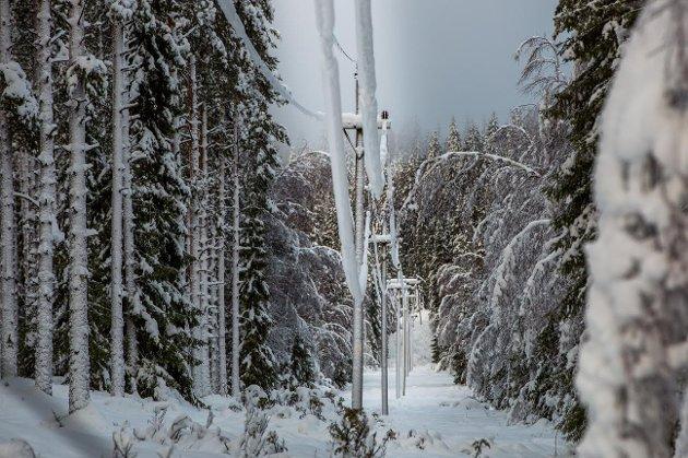 FÆRRE: - Erfaringene fra Mjøskraft/Eidsiva-fusjonen (2005) er at tallet på arbeidsplasser har blitt redusert fra cirka 100 til dagens cirka 42 i Gjøvik/Toten området, skriver artikkelforfatteren.