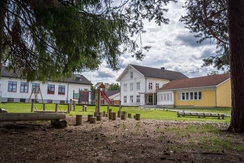 Vi i Rødt ønsker ikke å stoppe planene om å bygge en fin flott skole til Biri-barna, men vi ønsker en viss moderasjon dersom begrunnelsen for å bygge en stor skole faller bort ved at planene fra HSØ endrer seg.