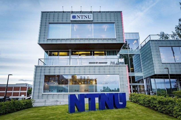 MEDISIN: – Gjøvik Arbeiderparti gikk på landsmøtet forrige helg inn for å opprette et legestudium ved NTNU Gjøvik, skriver Kristin Stensrud (Ap).