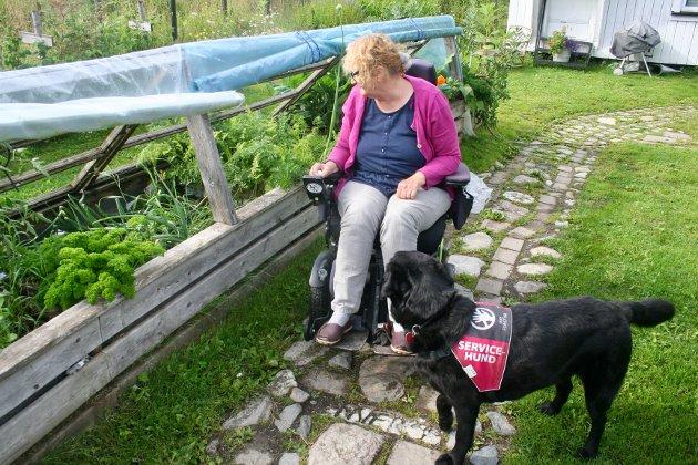GODT SAMARBEID: Med seg i hagen har Johanna Eike alltid hunden Aiko som hjelper til med ulike gjøremål.