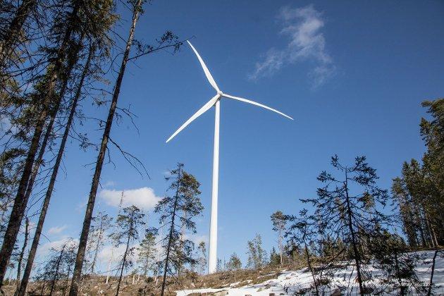 ØDELEGGENDE: Miljødirektoratet har beregnet at 40 prosent av de planlagte vindkraftområdene vil ligge i det som i dag er urørt (inngrepsfri) natur.
