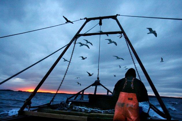 DIALOG: Vi mener også at en fondsløsning for hele fiskeflåten, der CO₂-avgiften kan gå tilbake til klimatiltak, kan være en løsning, skriver Lennart Danielsen.