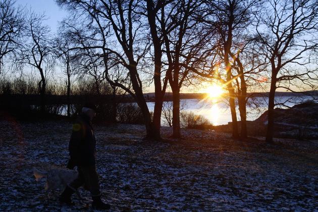 Vintersolverv 21. desember, selv i Oslo er sola såvidt over horisonten på årets mørkeste dag. Foto: Terje Bendiksby