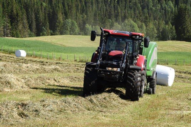 Gressmengden varierer fra åker til åker. Jord, som holder på vannet, gir bedre avling enn åker bestående av sandjord.