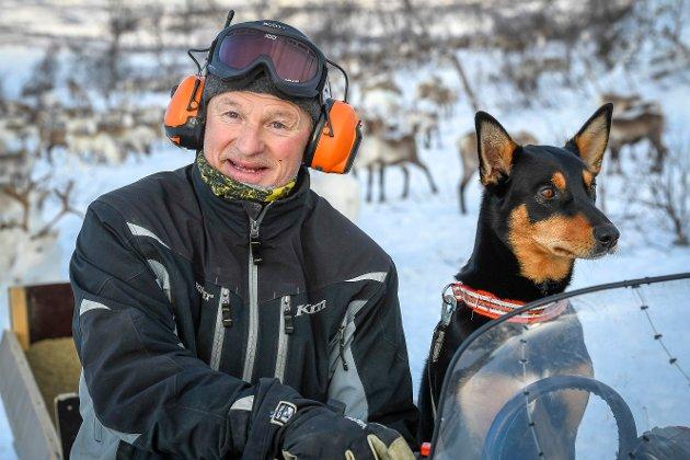 Den australske gjeterhunden Hot har fast plass på snøscooteren, når matfar Stig Lifjell er ute og ser til reinsdyrene sine.