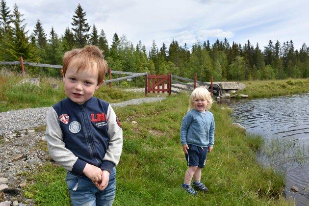MED BESTEFORELDRE: Benjamin Prestmo Pedersen og William Haukaas Sveberg var med besteforeldrene sine på Vollkoia søndag. Benjamin hadde tatt turen helt fra Lillestrøm.