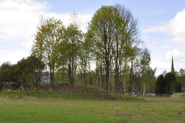 Hole kirkegård skal utvides med totalt 10 mål. Det skal lages egen vedlikeholdsplan for gravhaugen, som skal innlemmes i kirkegården.