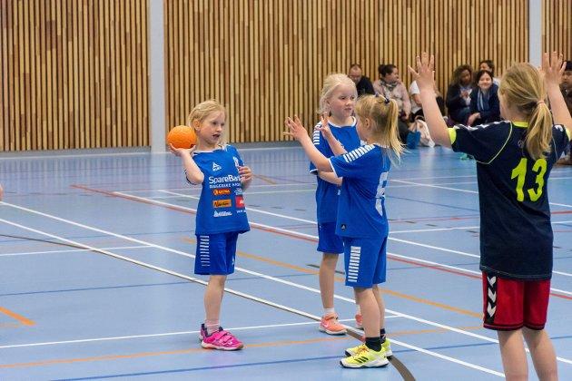 - Jeg vil likevel takke representantene fra Frp for at de igjennom hele prosessen med å løfte fram prosjekt Haugsbygd Arena. (Arkivfoto) Knut Andreas Ramsrud