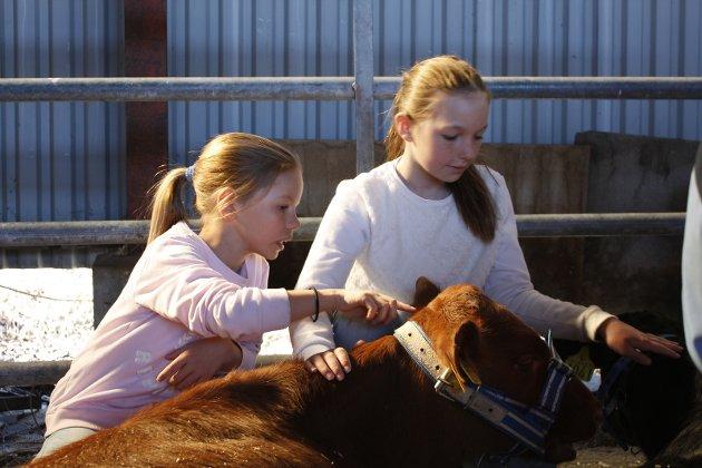 Ingrid Thomasrud (9) og Ingrid Kjøbstad Myre (10) ble glade i NRF-kalvene.