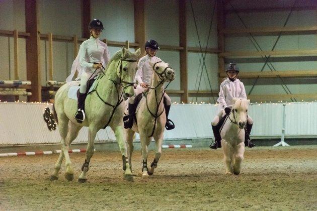 ALLE STØRRELSER: Ponnier og større hester i skjønn forening i ridehallen.