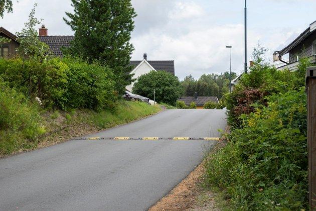 SKOLEVEI? – Det står i avisartikkelen at dette er en skolevei, men det er ikke noen flere skolebarn som går på denne veien enn andre veier i nærområdet, sier beboere i området i dette innlegget.