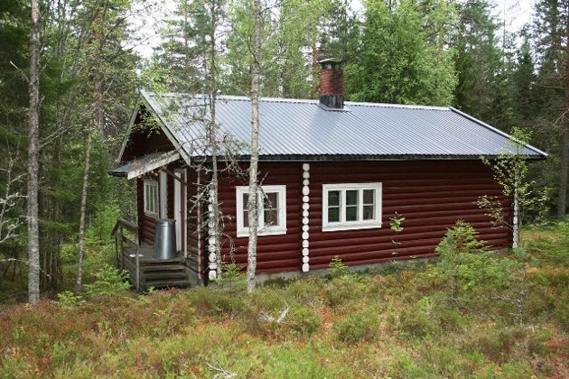 Skogbygda: Denne skogeiendommen med tømmerhytte ble solgt for 13.000.000 kroner. Eiendommen gikk hele 2 millioner over prisantydning.