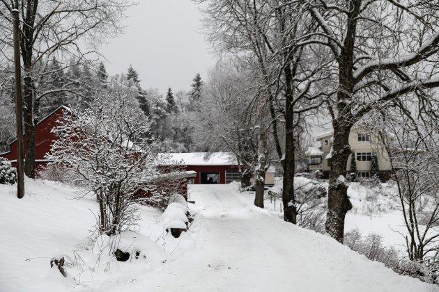 Torgenrud gård ligger innerst i en blindvei, en kilometer fra hovedveien.