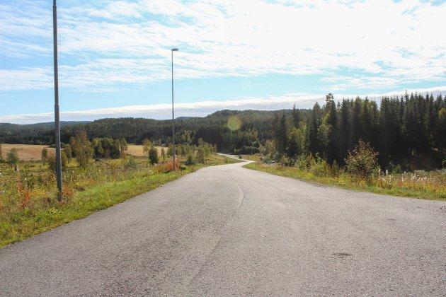 – Hovedflyplass: Innsenderen er kritisk til planene om å bygge en «hovedflyplass for småfly» på Krogstad i Sørum. Foto: Rune Fjellvang