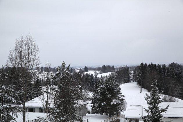 Utsikten er upåklagelig. Sørover ser man Auli. Neskollen mot vest. Gjennom skogen vises kirkespiret på Nes kirke. I klarvær ser man over til Varingskollen i Hakadal.