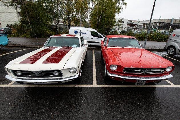 Vakre Mustang
