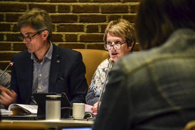RÅDMANN: Gudrun Grindaker måtte gå eter en konflikt med ordfører Bjørn Ole Gleditsch (H). Kommunen har ennå ikke skaffet en ny fast rådmann. Arkivfoto: Paal Even Nygaard