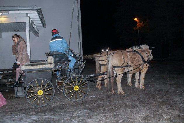 HEST: Noen av jentene kjørte hest og kjerre til juleballet.