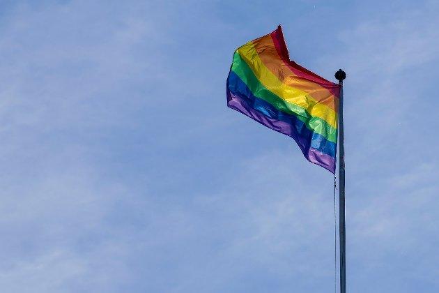 ØNSKER IKKE: Innsenderen ønsker ikke Pride-flagg i Strand.