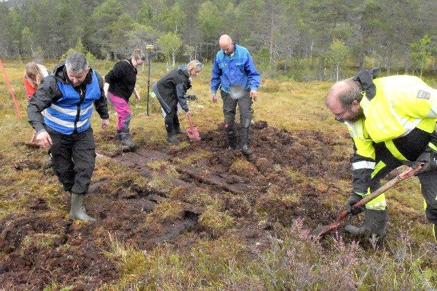Det er på tida at vi lærer oss ein del om myra, slik at vi kan ta vare på denne viktige delen av naturen, skriv Øystein Folen i Naturvernforbundet.