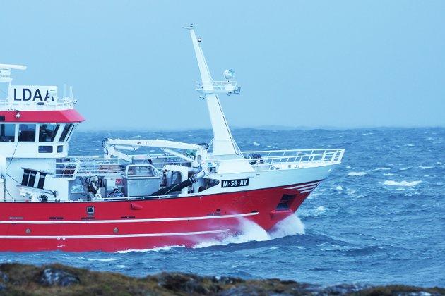 Hvorfor slikt hastverk med å behandle fiskerimeldingen, spør Øyvind Lyngås.